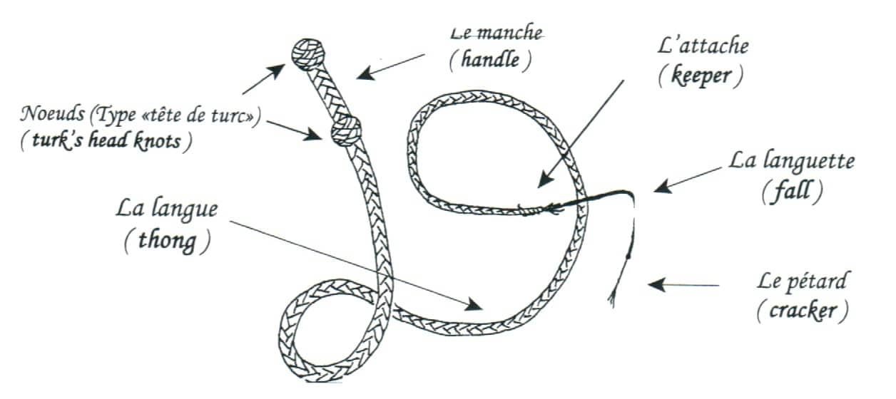 Dessin descriptif d'un fouet de cirque et de ses différentes parties : les nœuds, le manche, la langue, l'attache, la languette et le pétard.
